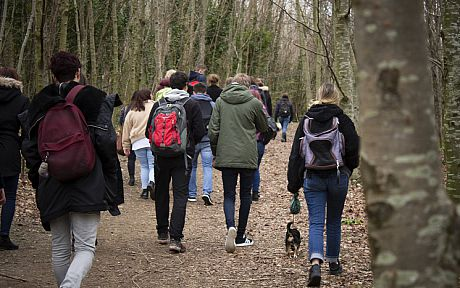 Group of students walking in woodland